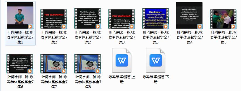 叶问宗师一脉咏春拳体系教学7集视频