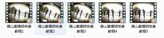 佛山麦耀明咏春拳视频教程