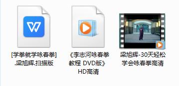 梁旭辉30天轻松学会咏春拳_李志河咏春拳教程HD高清