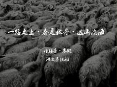 高中高三语文寒假系统辅导班教学视频(代薇老师 7节)