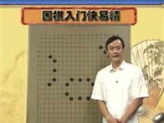 围棋入门快易精_围棋入门视频教程_王元围棋视频讲座