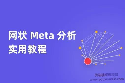 网状Meta分析实用教程