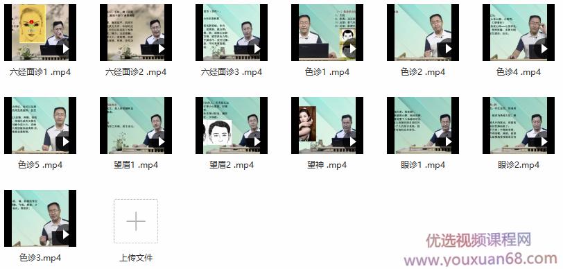 王涛中医面诊基础13集望诊色诊眼诊望眉六经面诊