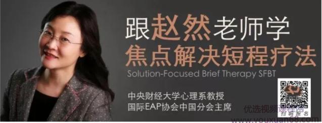 赵然 于丹妮 SFBT高效焦点解决取向治疗课程 视频课