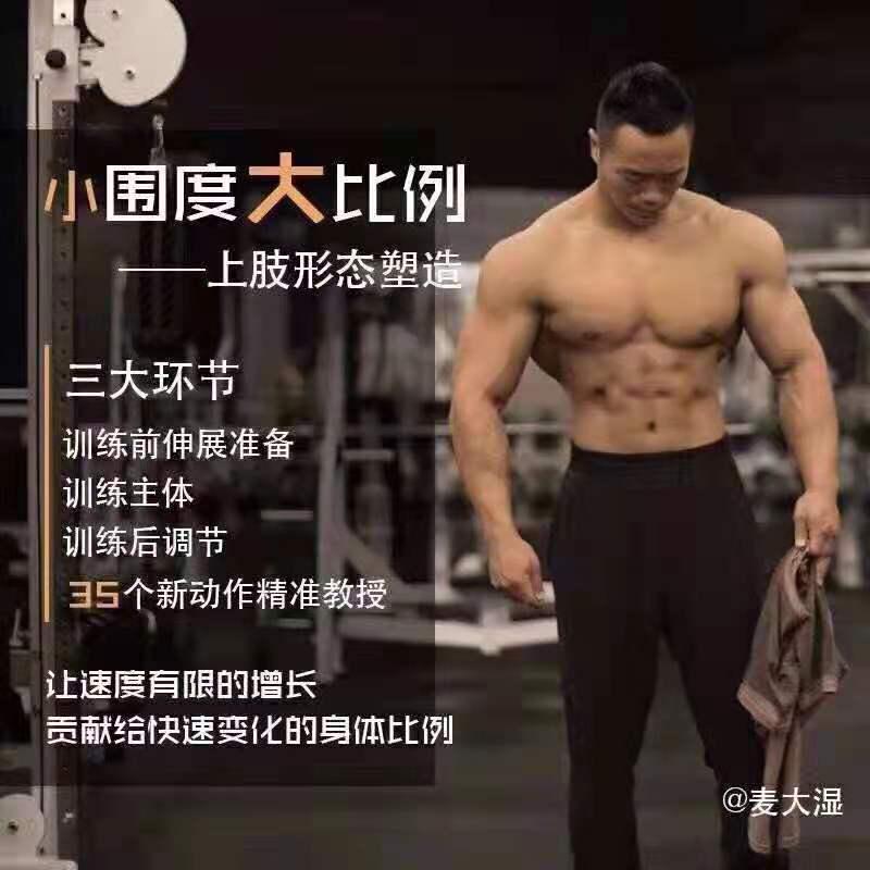 麦大湿 小围度大比例,上肢形态塑造,健身训练精准教授